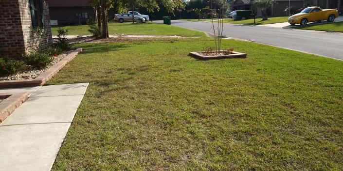 Hire our crew for weekly, bi-weekly or monthly lawn care maintenance.